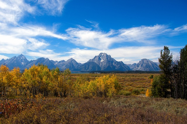 Autumn In The Tetons, Autumn, Colors, Aspens, Grand