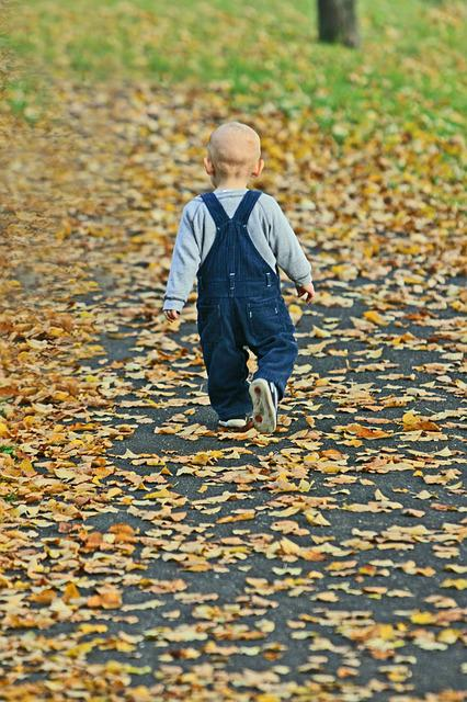 Baby, Park, Autumn, Fall Leaves, Happy, Tree
