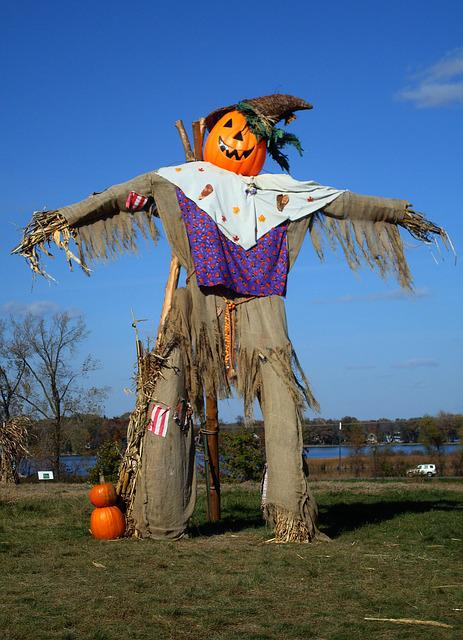 Scarecrow, Autumn, Fall, Seasonal, Harvest, Halloween