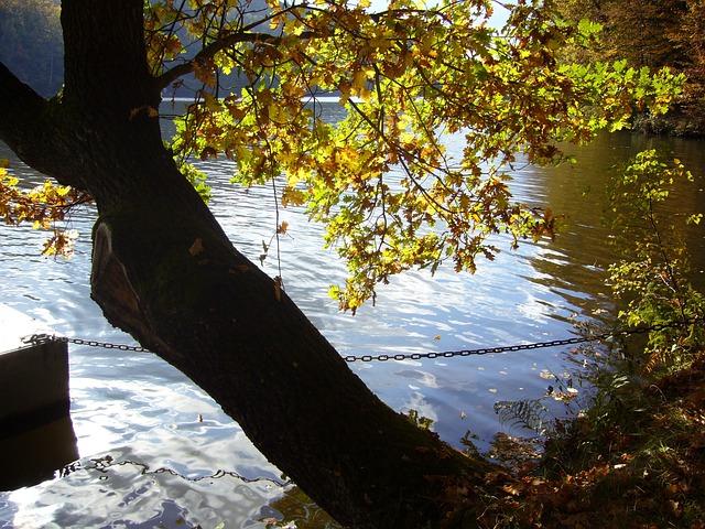 Dam, Kriebstein, Autumn