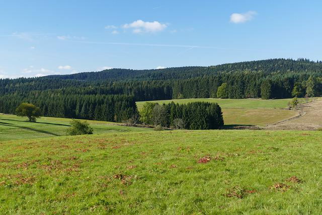 Meadow, Alm, Landscape, Nature, Autumn, Sky, Clouds