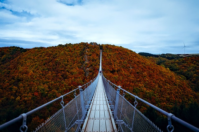 Germany, Autumn, Fall, Foliage, Landscape, Bridge