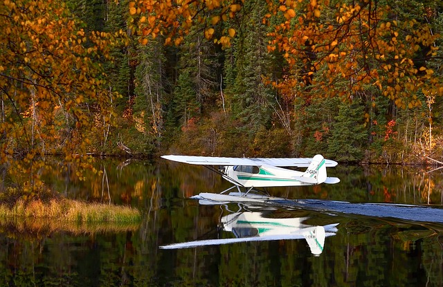 Seaplane, Autumn Landscape, Lake, Water, Nature