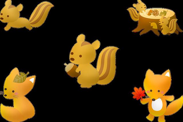 Squirrel, Fall, Autumn, Acorn, Leaf, Nature, Tree