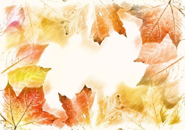 Bokeh, Autumn, Color, Leaves, Colorful, Golden Autumn