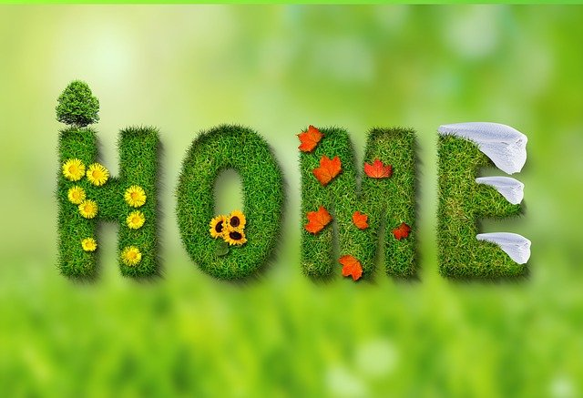 Seasons, Spring, Summer, Autumn, Winter, Leaves