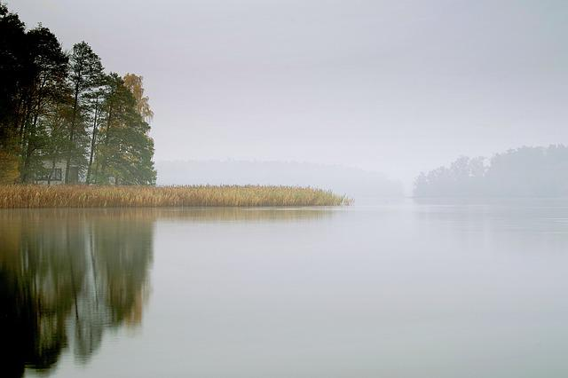 Lake, The Fog, Pond, Water, Morning, Dawn, Autumn