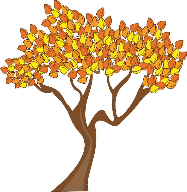 Autumn, Season, Tree, Leaves