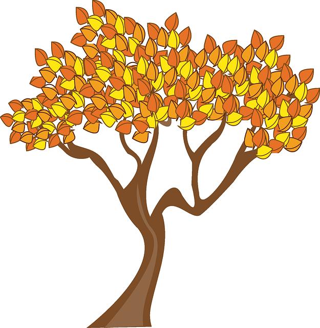 Autumn, Season, Tree, Leaves