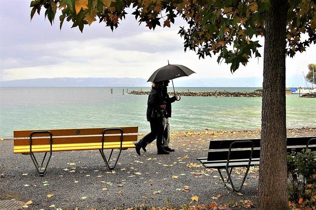 Umbrella, Rain, Autumn, Yellow Leaves, Para, Wind