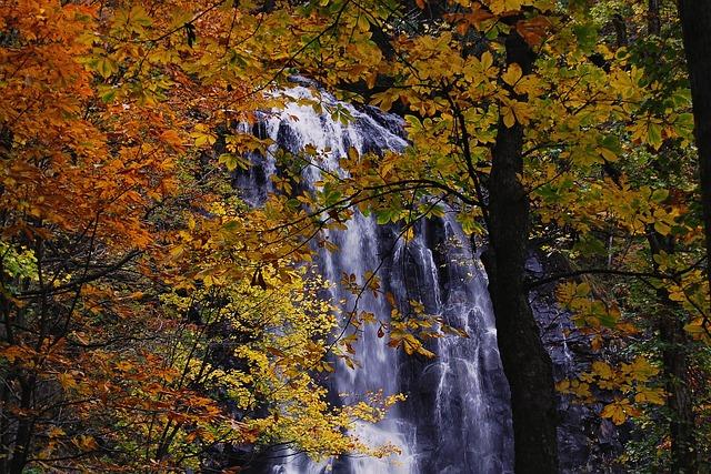 Japan, Natural, Landscape, Waterfall, Autumn