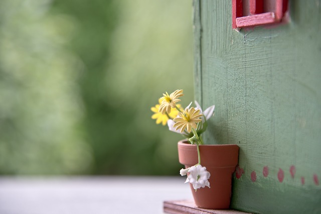 Flowers, Aviary, Garden Shed, Flowerpot, Close Up