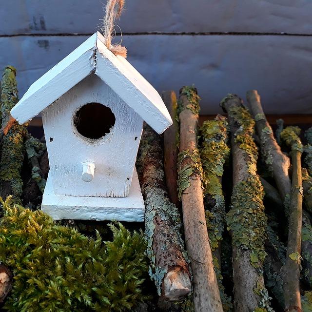Aviary, Branches, Moss, Weave, Bird Feeder, Mini, Nest