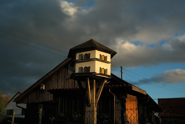 Aviary, Pigeon House, Hut, Scheuer, Pigeon Keeping