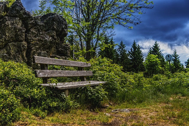 Bank, Rest, Wooden Bench, Nature, Sit, Forest, Away