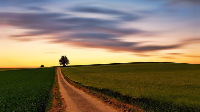 Nature, Landscape, Sky, Panorama, Field, Away, Lane