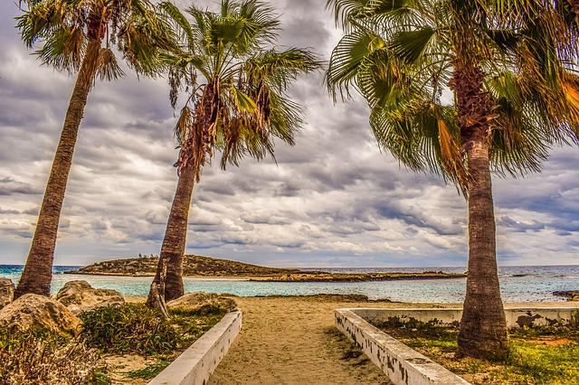 Cyprus, Ayia Napa, Nissi Beach, Autumn, Palm Trees