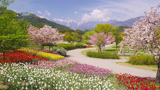 Alps, Azumino, Park, In, Spring, 03