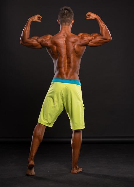 Fitness, Muscles, Back, Strengthening, Man