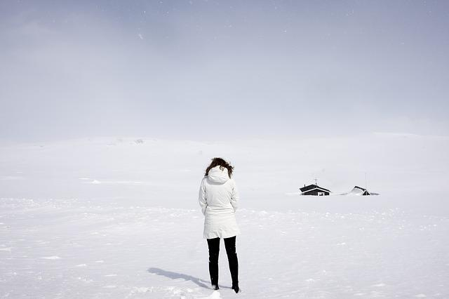 Adult, Adventure, Back View, Cold, Female, Frost