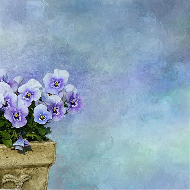 Pansy, Plant, Flowerpot, Background, Texture, Blue