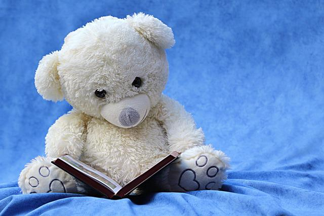 Still Life, Teddy, White, Read, Book, Background Blue