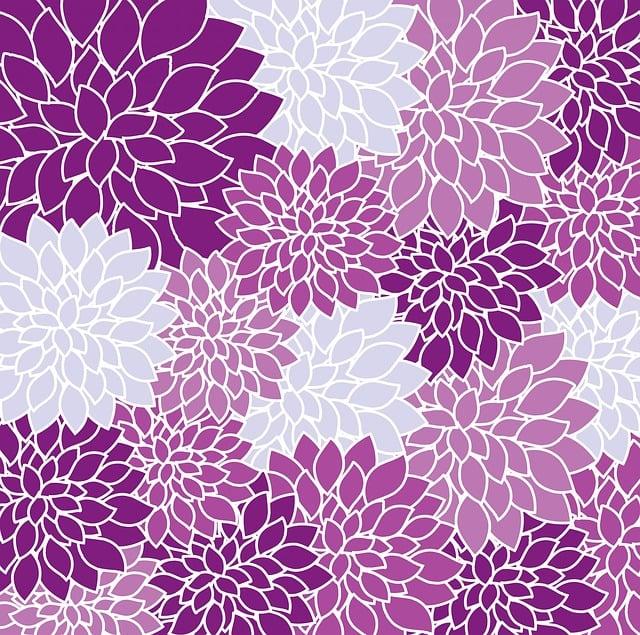 Floral, Wallpaper, Flowers, Dahlia, Purple, Background