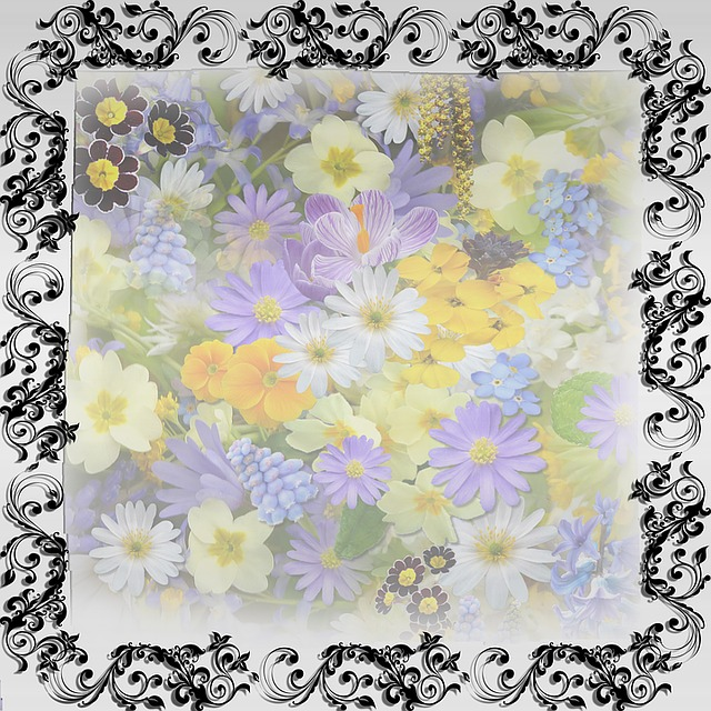 Frame, Template, Flowers, Background