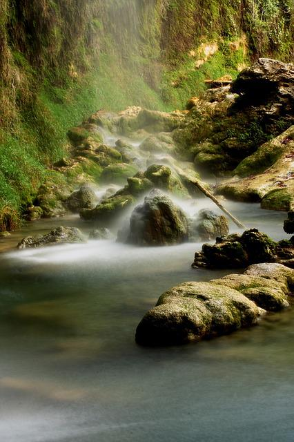 Waterfall, Nature, Green, Natural Life, Background