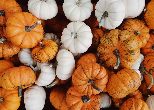 Gourds, Fall, Autumn, Harvest, October, Background