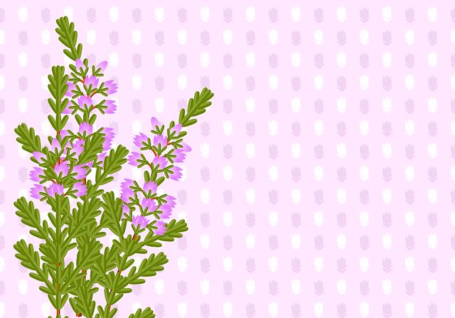 Background, Heide, Heather, Bouquet, Posy, Pattern