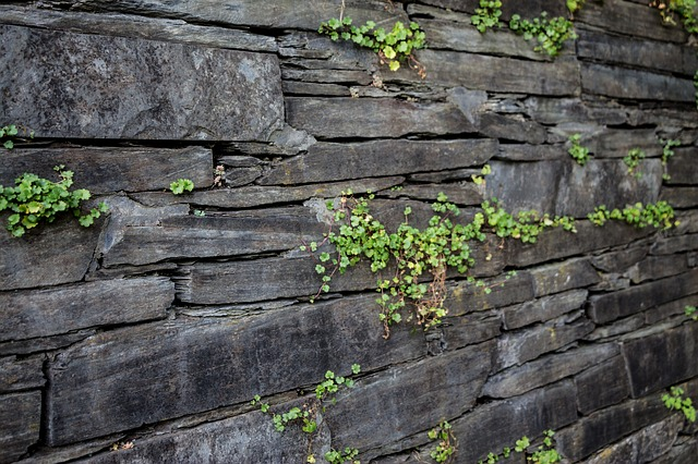 Wall, Structure, Stone, Texture, Background, Pattern