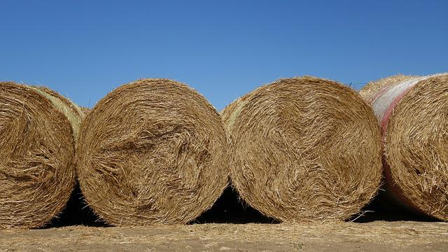 Straw Bales, Straw, Roll, Summer, Background