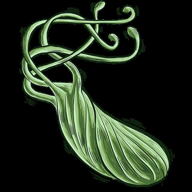 Bacteria, Bacterium, Heliobacter Pylori, H Pylori