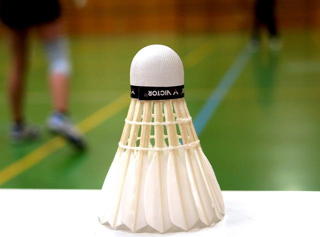 Badminton, Ball, Sport, Leisure, Recreational Sports