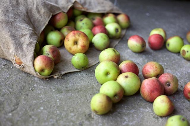 Apple, Harvest, Bio, Garden, Bag Of Fruit, Food, Graze