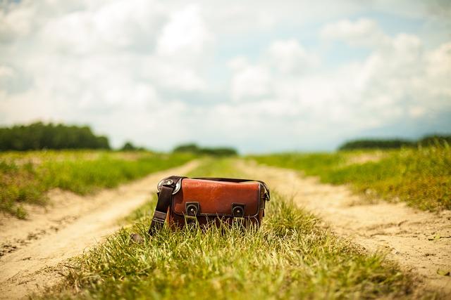 Handbag, Purse, Bag, Country Lane, Landscape, Nature