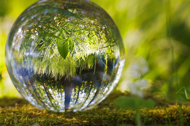 Ball, Environment, Grass, Nature, Spherical, Reflection