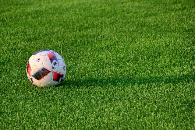 Football, Sport, Ball, Grass, Rush, Sports Field