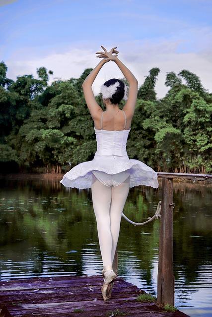 Balletistas, Ballet, Park, Nature, Dance, Lake, Swan
