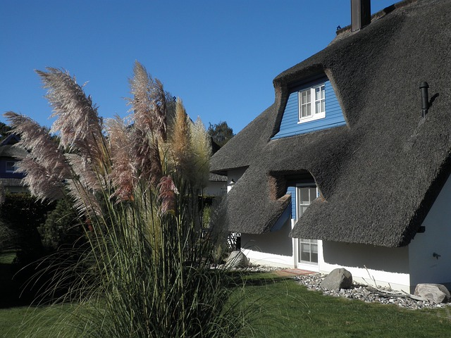 Home, Thatched Roof, Baltic Sea, Island Of Usedom