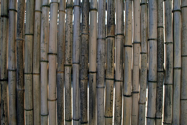 Bamboo, Fence, Wall, Bamboo Wall