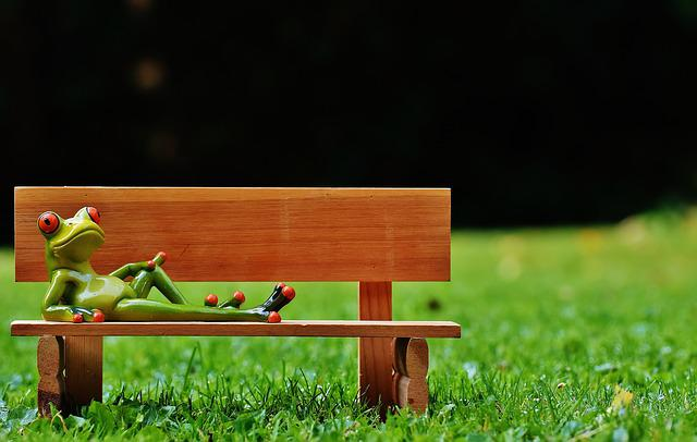 Frogs, Bank, Bench, Relaxed, Fig, Funny, Rest