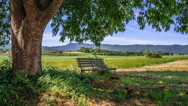 Rural Area, Bank, Landscape, Rural, Calm, Rural Road