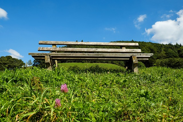 Bank, Bench, Wooden Bench, Old Bench, Wood, Weathered