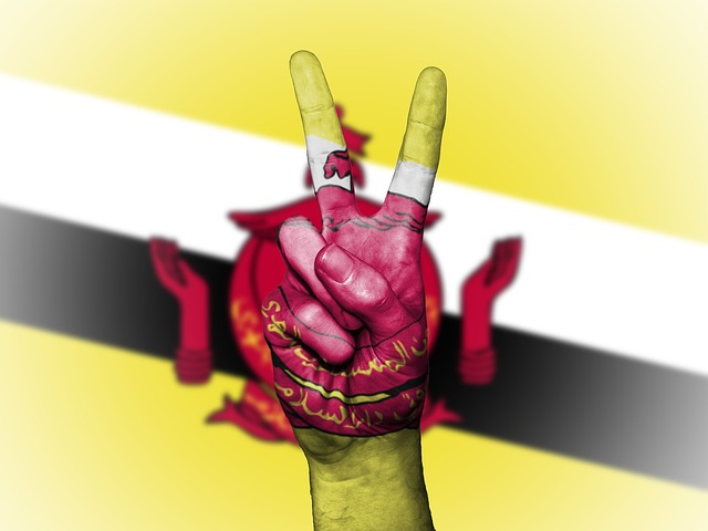 Brunei, Flag, Peace, Background, Banner, Colors