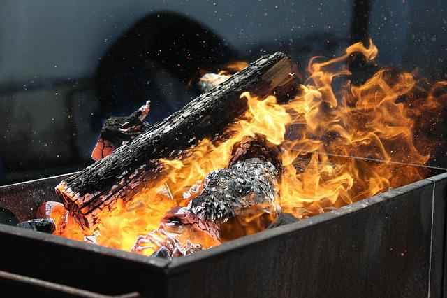 Barbecue, Fire, Trunks, Embers