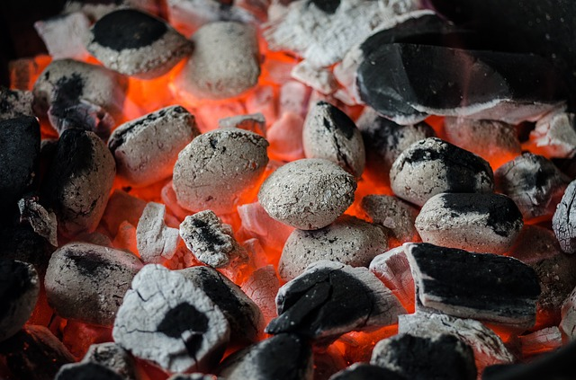 Bbq, Barbecue, Coal, Flame, Grill, Barbeque, Braai