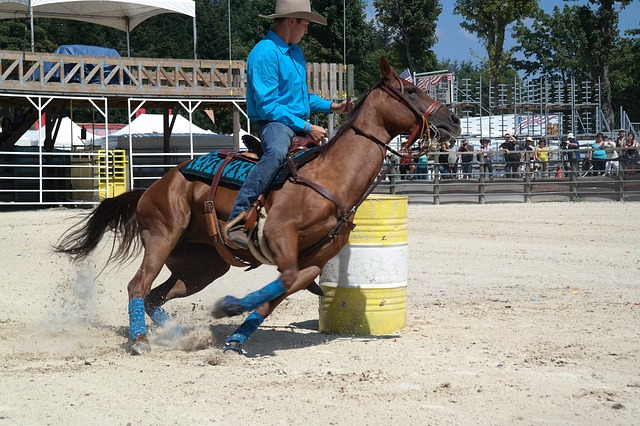 Equiblues, Rodeo, Barel Racing, Race Horse, Horse