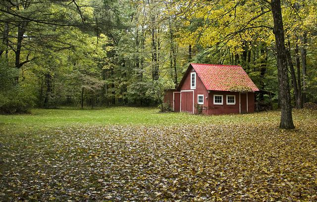 Red Barn, Red, Barn, Autumn, Leaves, Colorful